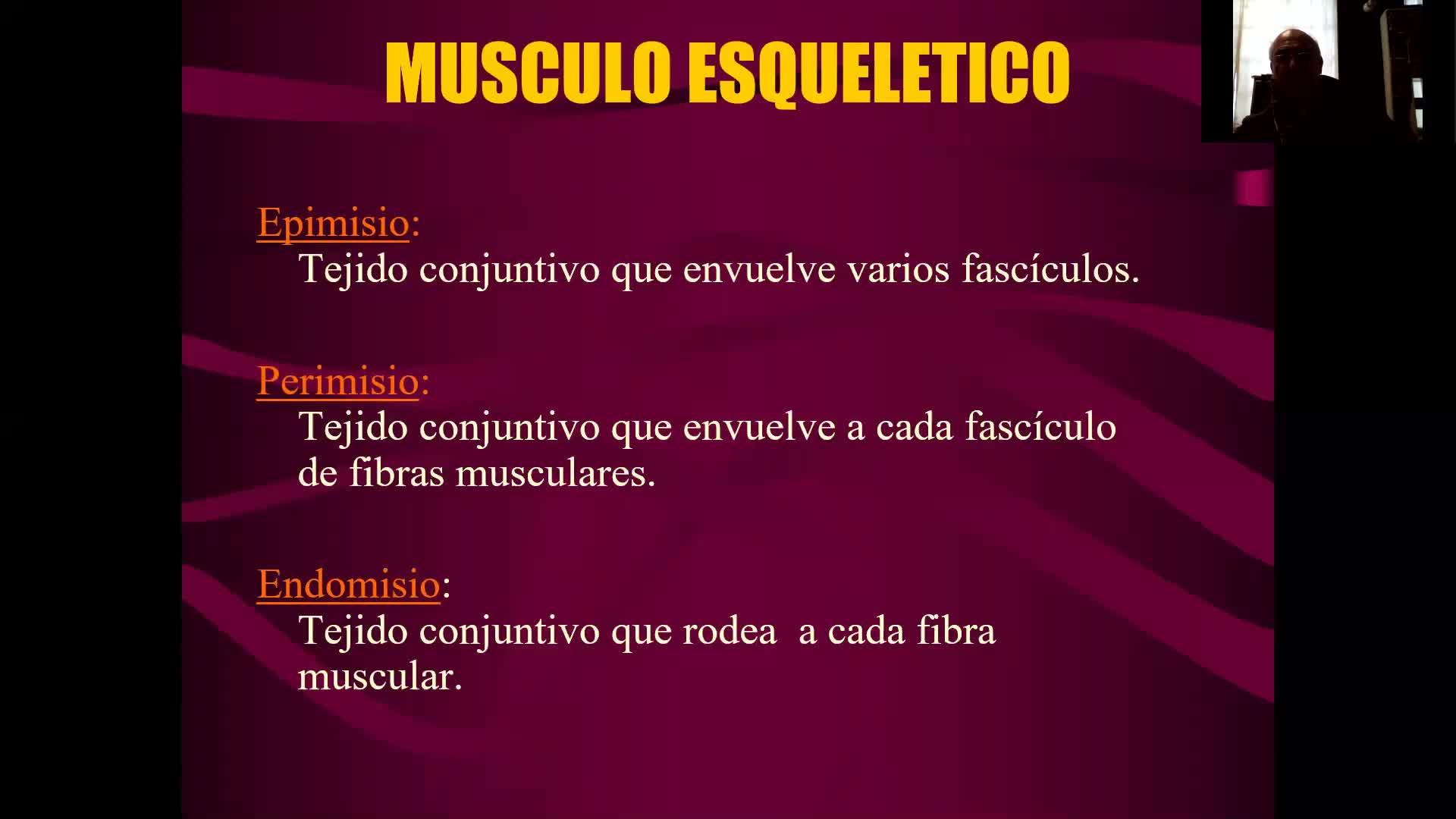 Microclase 2 Unidad III Tejido Muscular