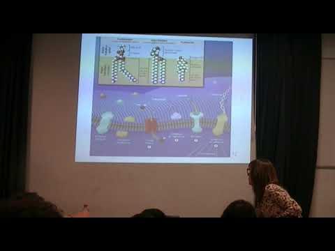 IBH FACIMED- CT: Metabolismo I, Membrana y Transporte