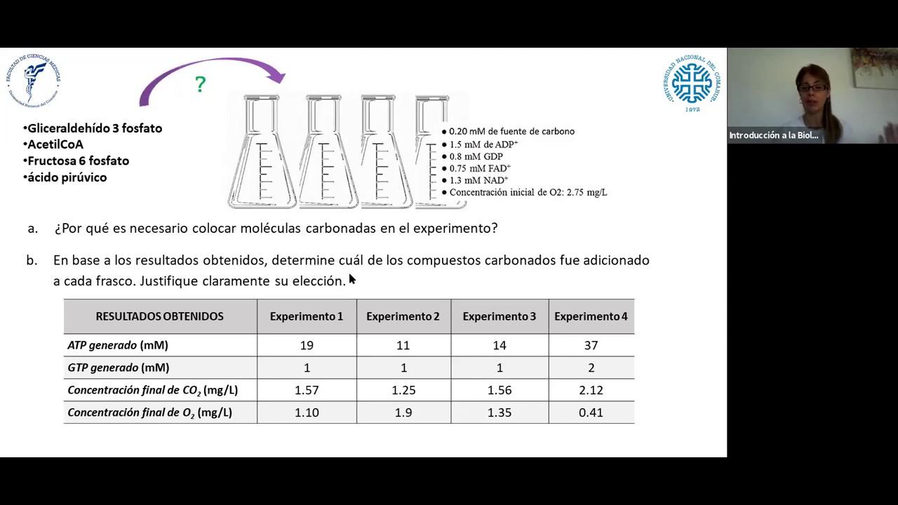 IBH FACIMED- CO: TP 3 Metabolismo II CE