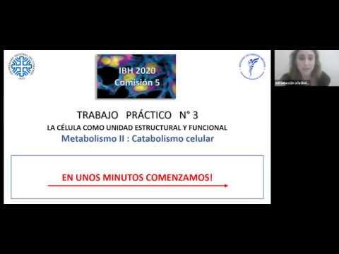 IBH FACIMED- CO: TP 3 Metabolismo II C5