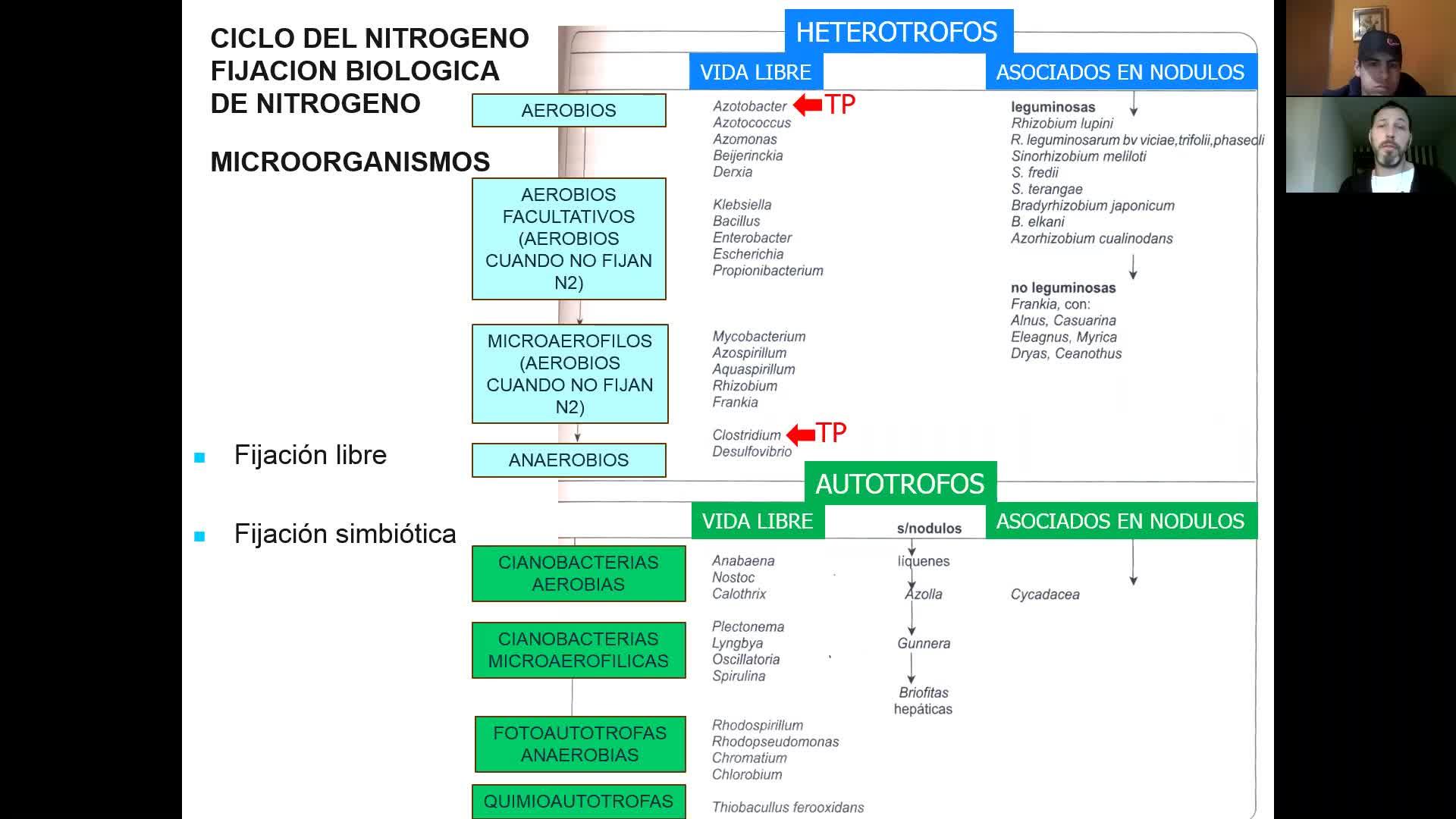 Microbiologia agricola UT13 Parte 5