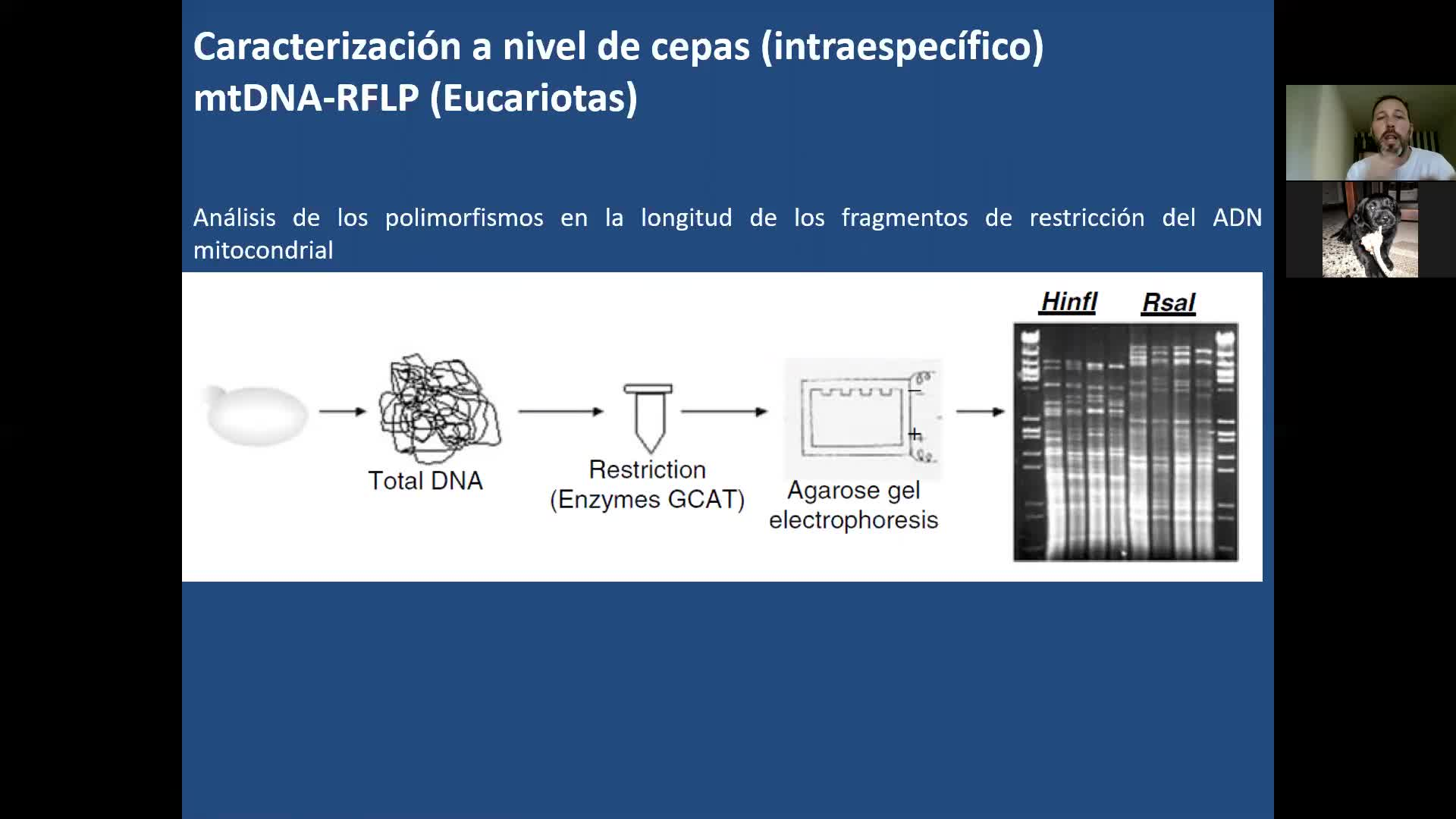 Microbiologia agricola UT6 Parte 4