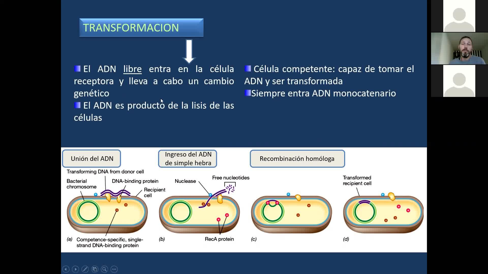 Microbiologia agricola UT8 Parte 2