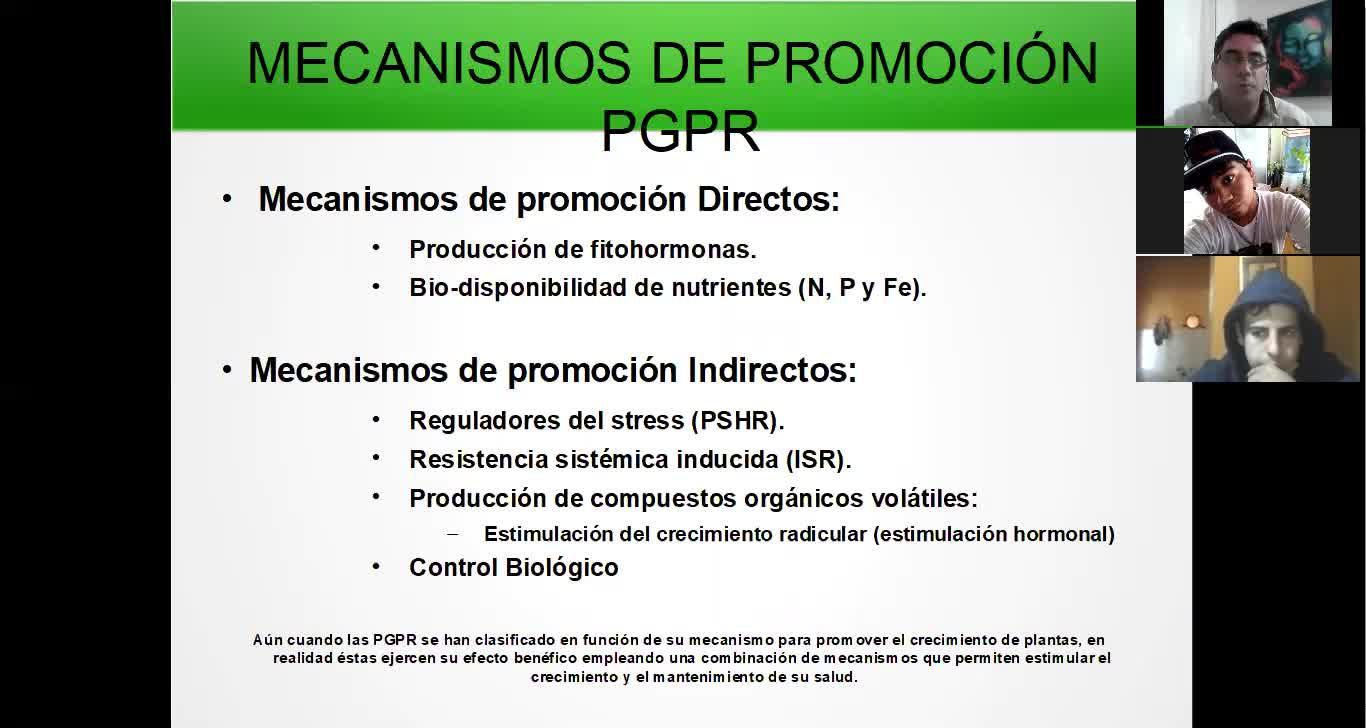 Microbiologia agricola UT15 Parte 1