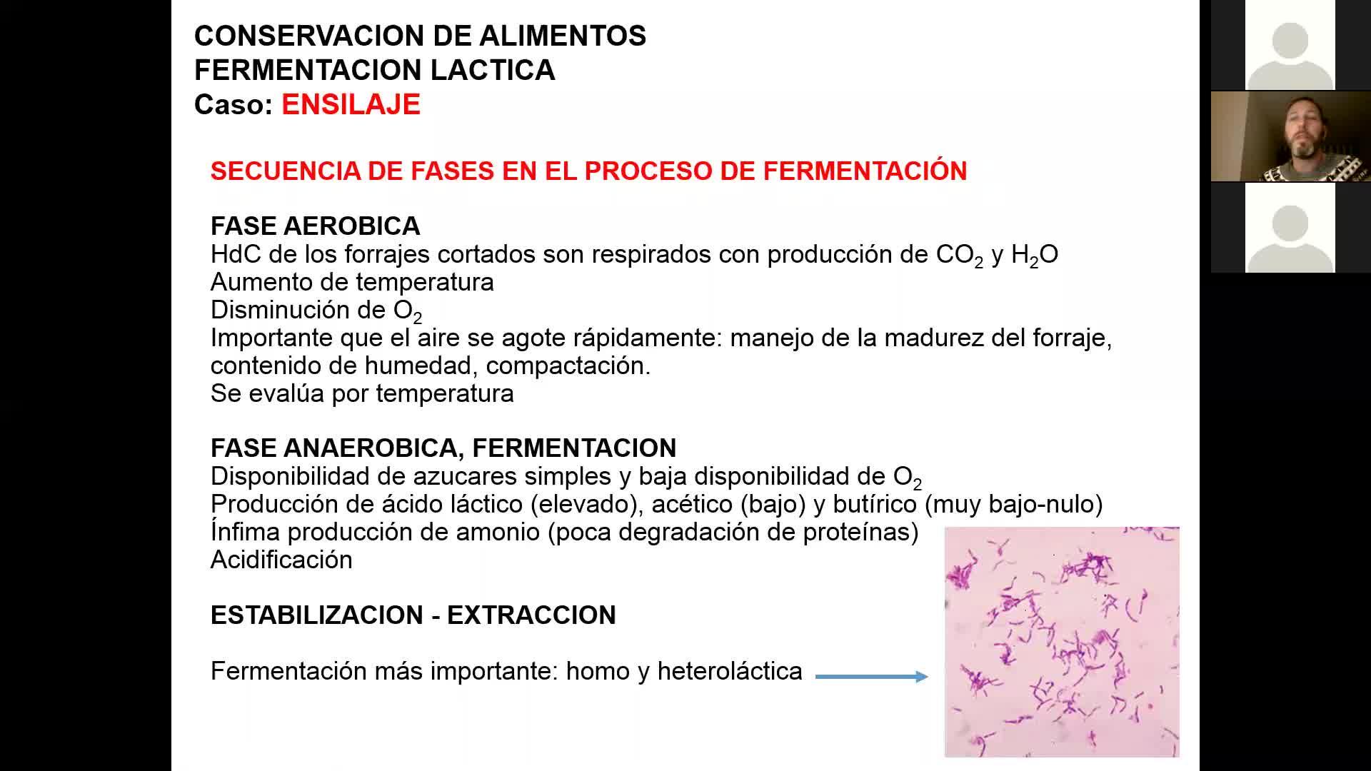 Microbiologia agricola UT16 Parte 3