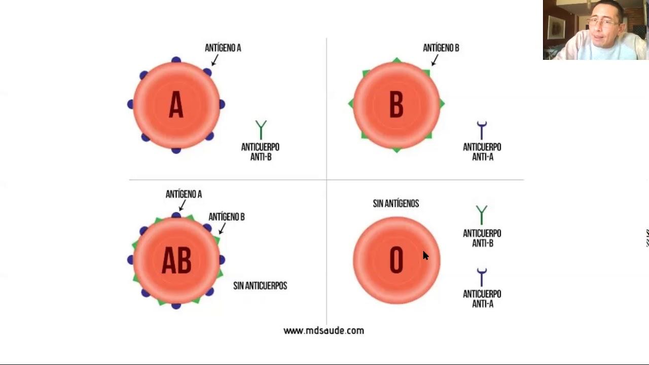 Microclase 2 Unidad IV Grupo y Factor