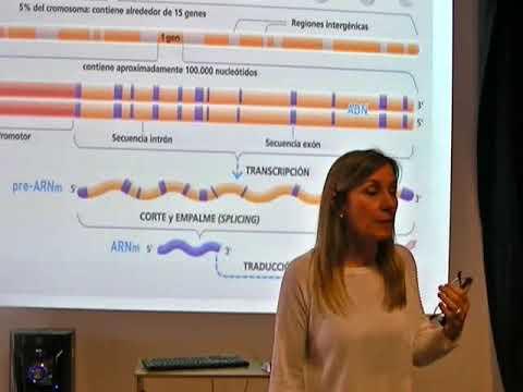 IBH FACIMED- CT: Expresión génica