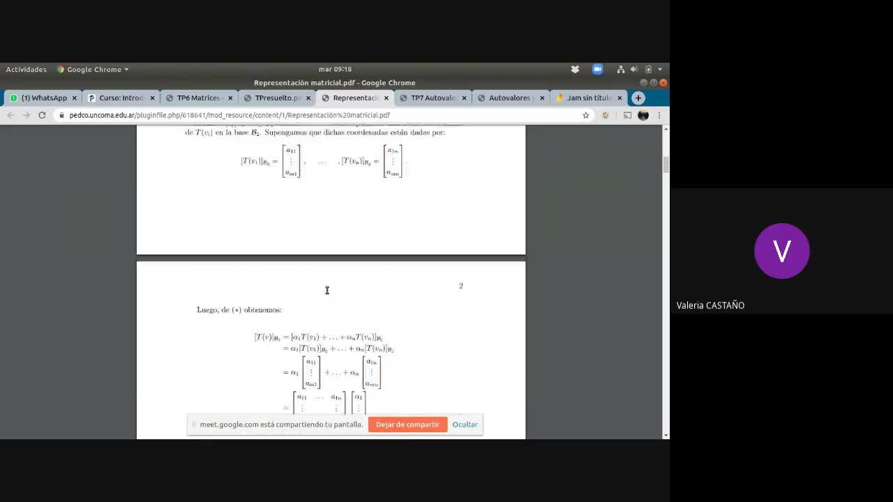 3Consulta Introducción al Álgebra Lineal- Álgebra lineal 1. 9 de junio