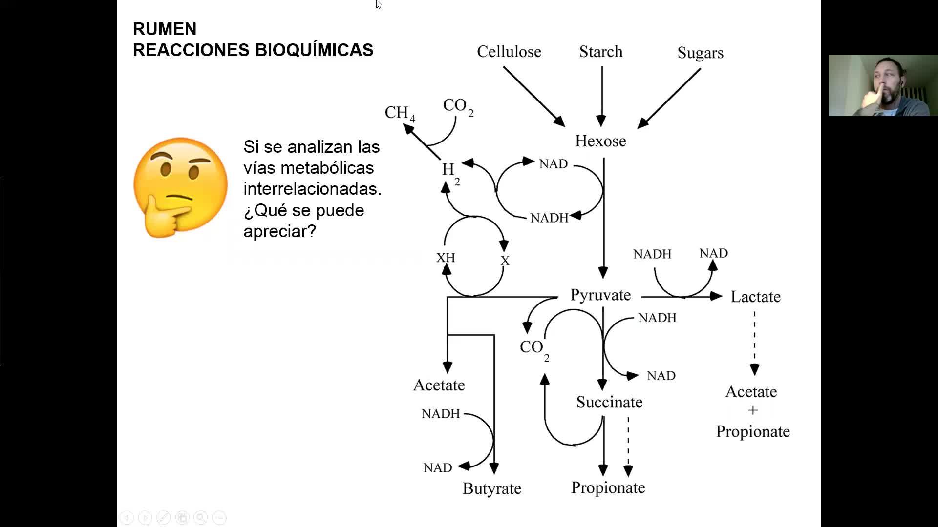 Microbiologia agricola UT18 Parte 1