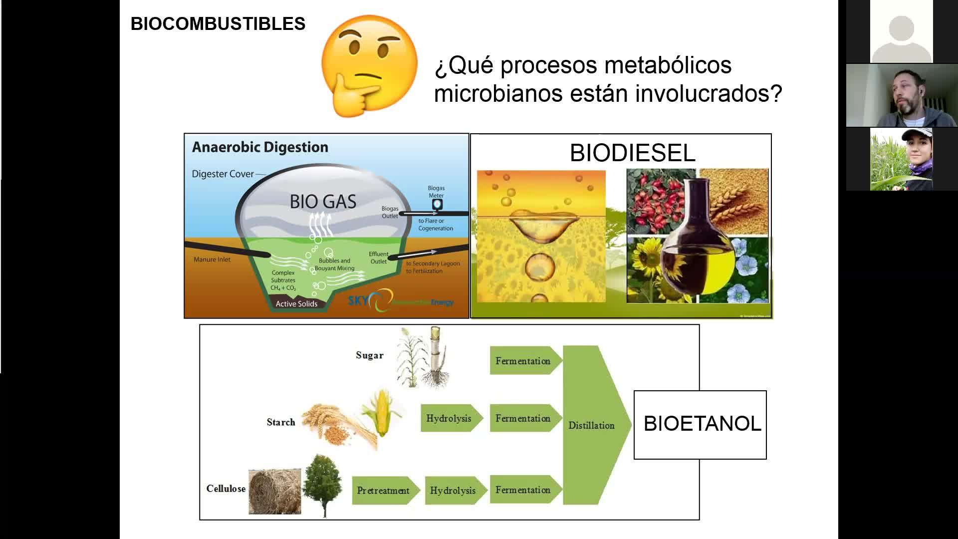 Microbiologia agricola UT18 Parte 2 y UT19 Parte 1