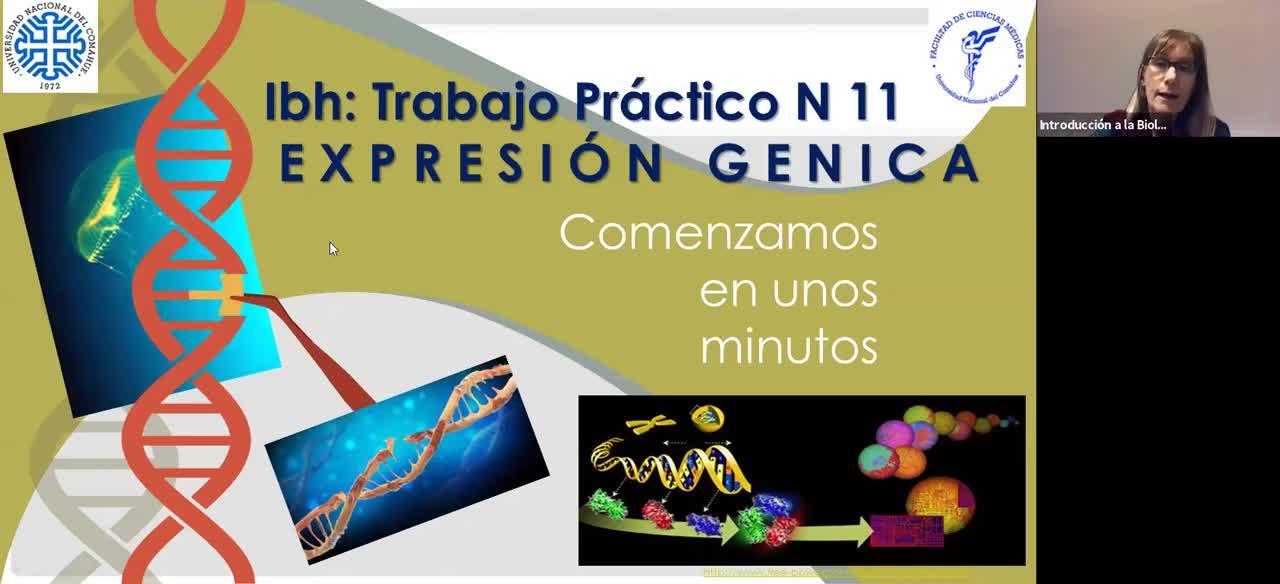 IBH FACIMED- CO TP 11 Expresión génica C1