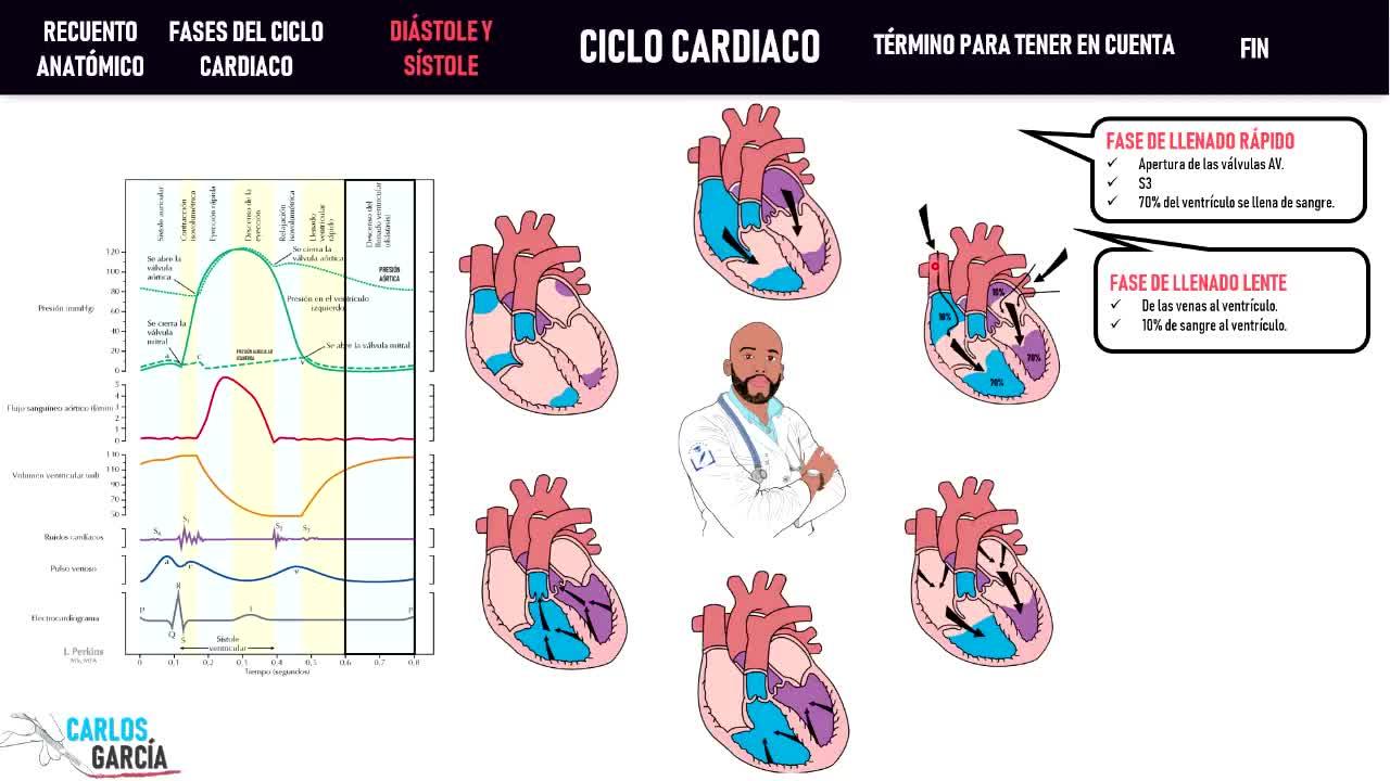 Microclase 1 Unidad IV Ciclo Cardíaco Dr. Claudio Andres Garcia