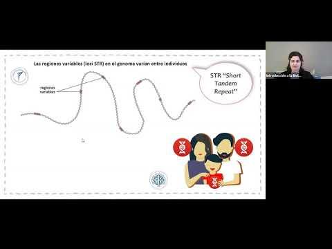 IBH FACIMED CO- TP Genetica III CA