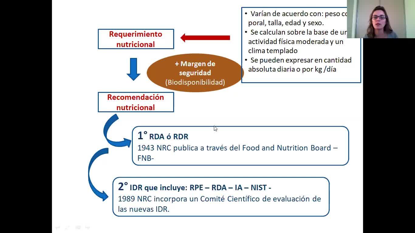 Requerimientos y recomendaciones nutricionales