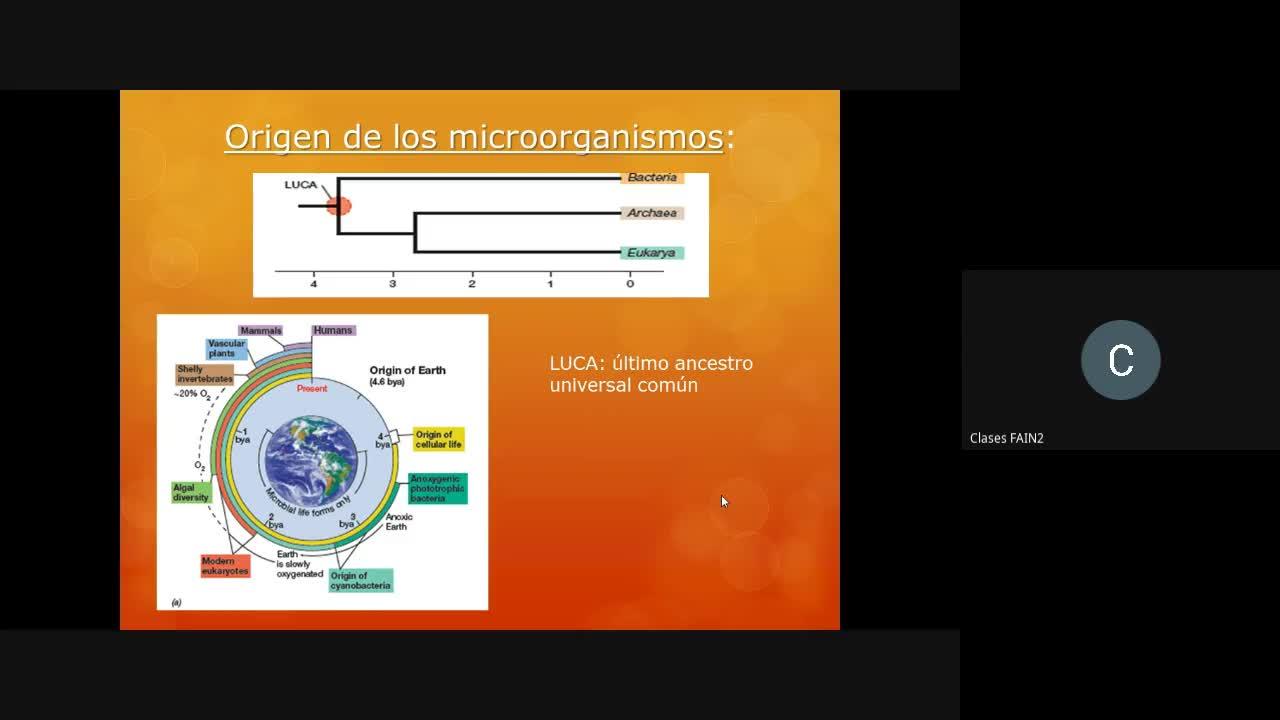 Clase1_Microbiología_Industrial_2020