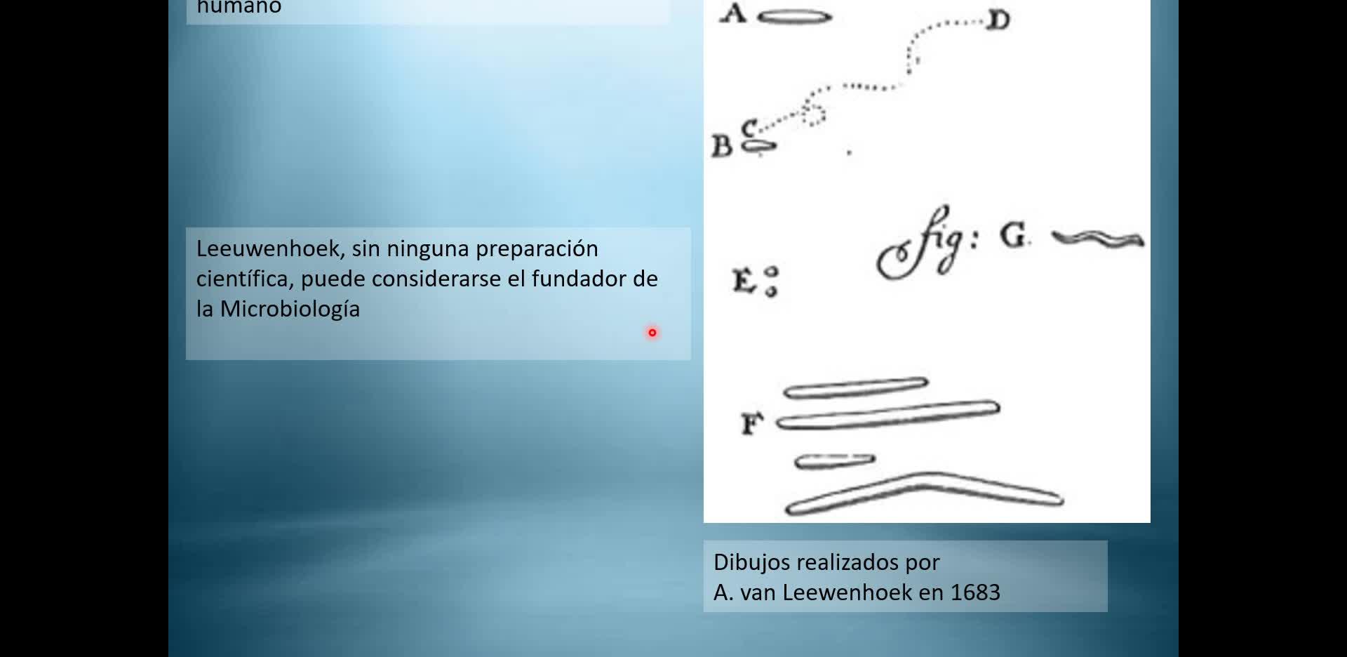 Clase2_Microbiología_Industrial_2020