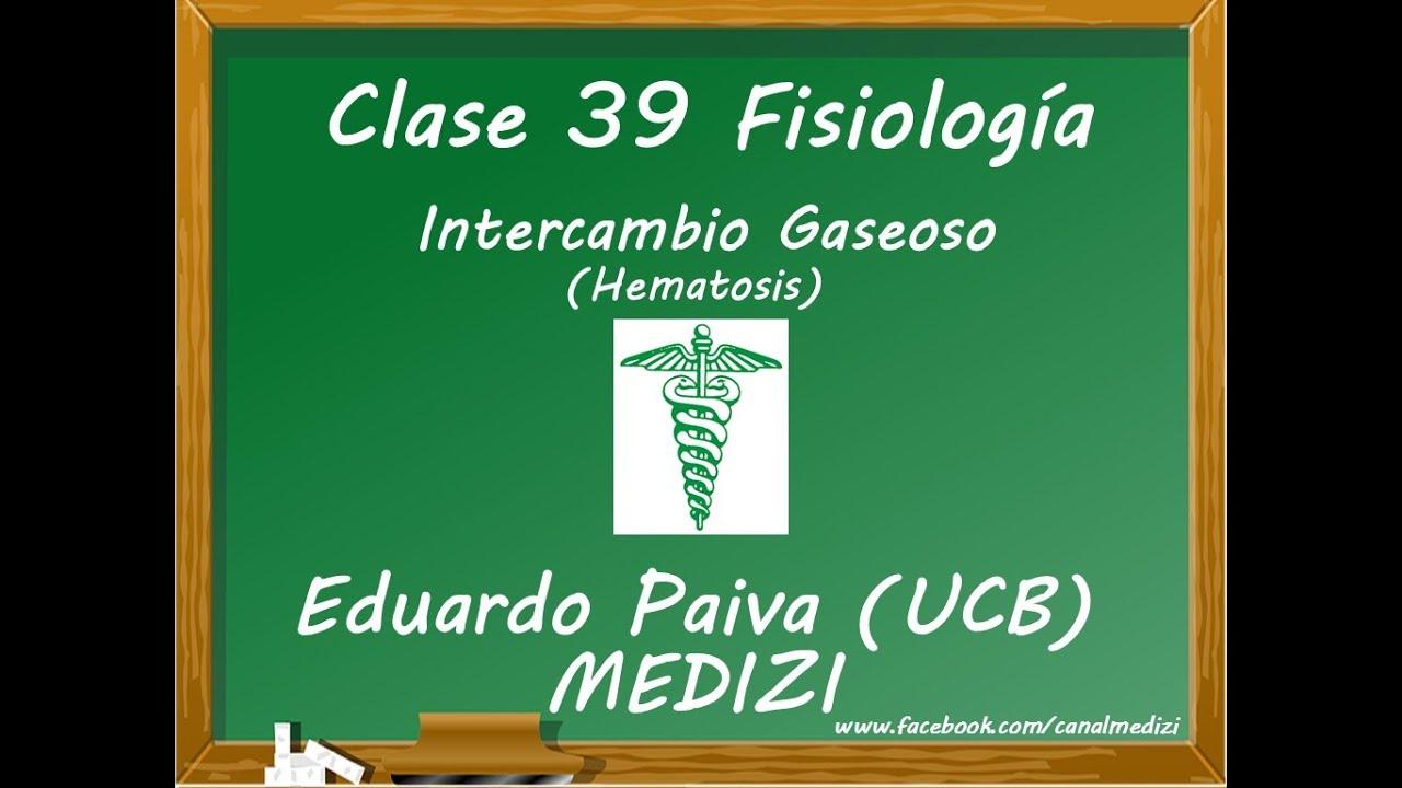 Microclase 11 -Unidad V - Fisiología Respiratoria - Intercambio Gaseoso Pulmonar (Hematosis)