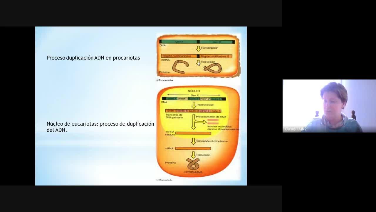 Clase 4 Microbiología Industrial 2020