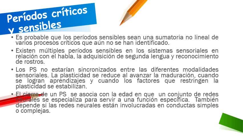 Neuropsicología Infantil II