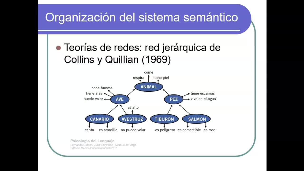 ProfesoradoLLC-PyAL2020-U3-Video 3