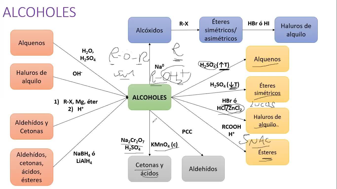 Clase Práctica (19-10-2020) - Alcoholes, fenoles y éteres