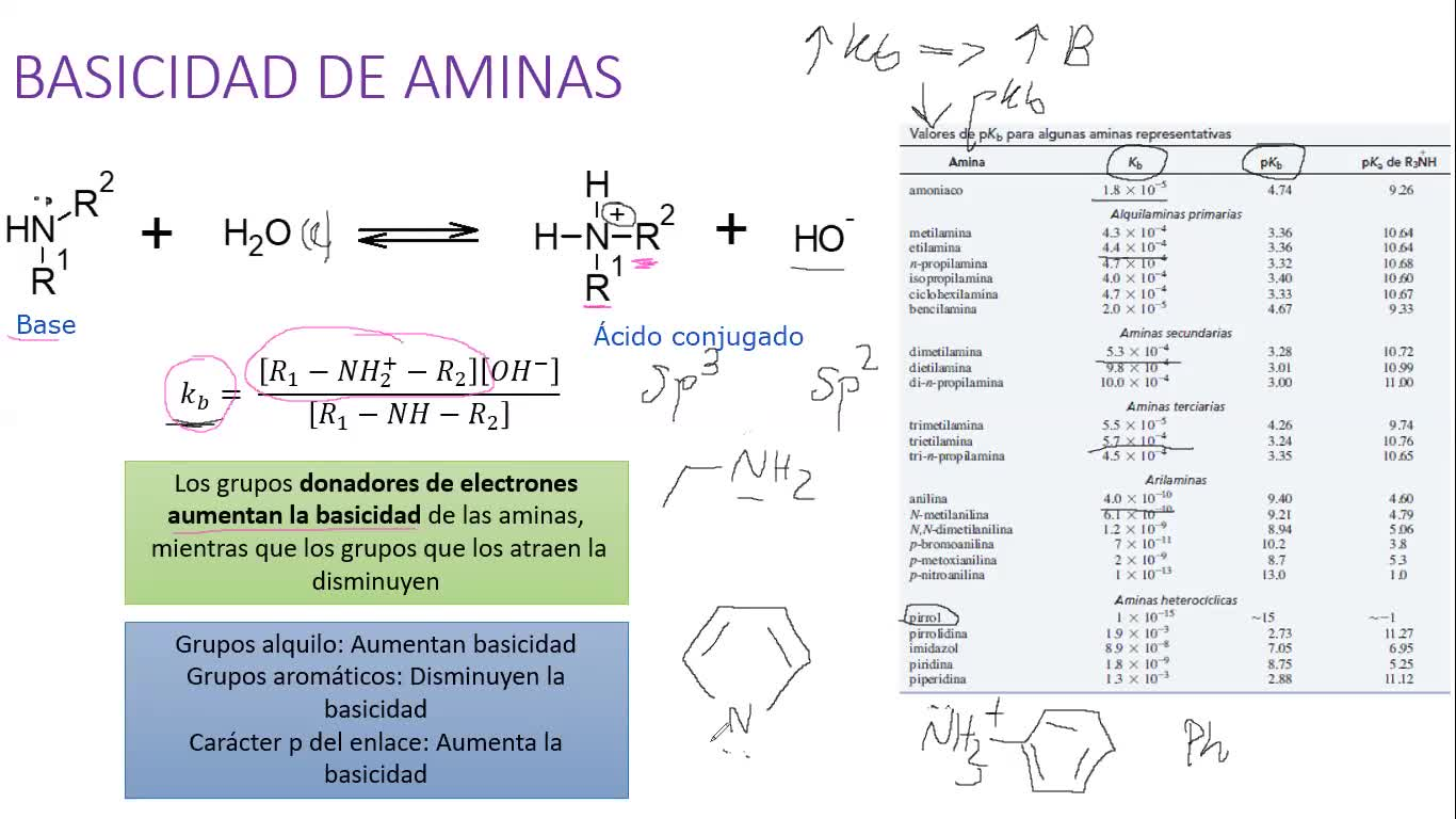Clase Práctica (27-11-20) - Aminas y Aminoácidos