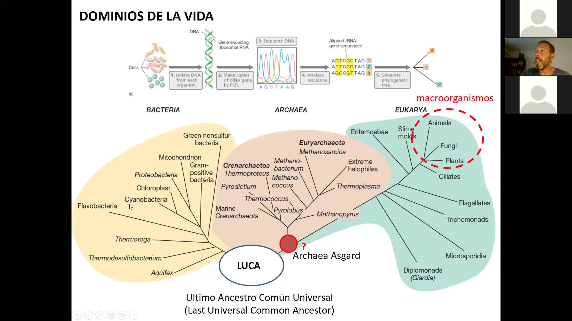 Microbiologia Agricola UT1 Parte 3