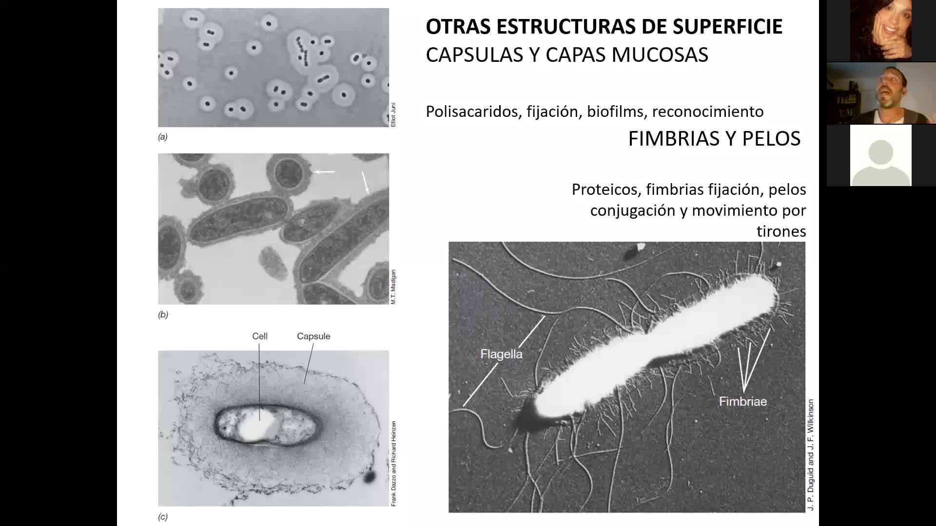 Microbiologia Agricola UT2 parte 2 y UT3 parte 1