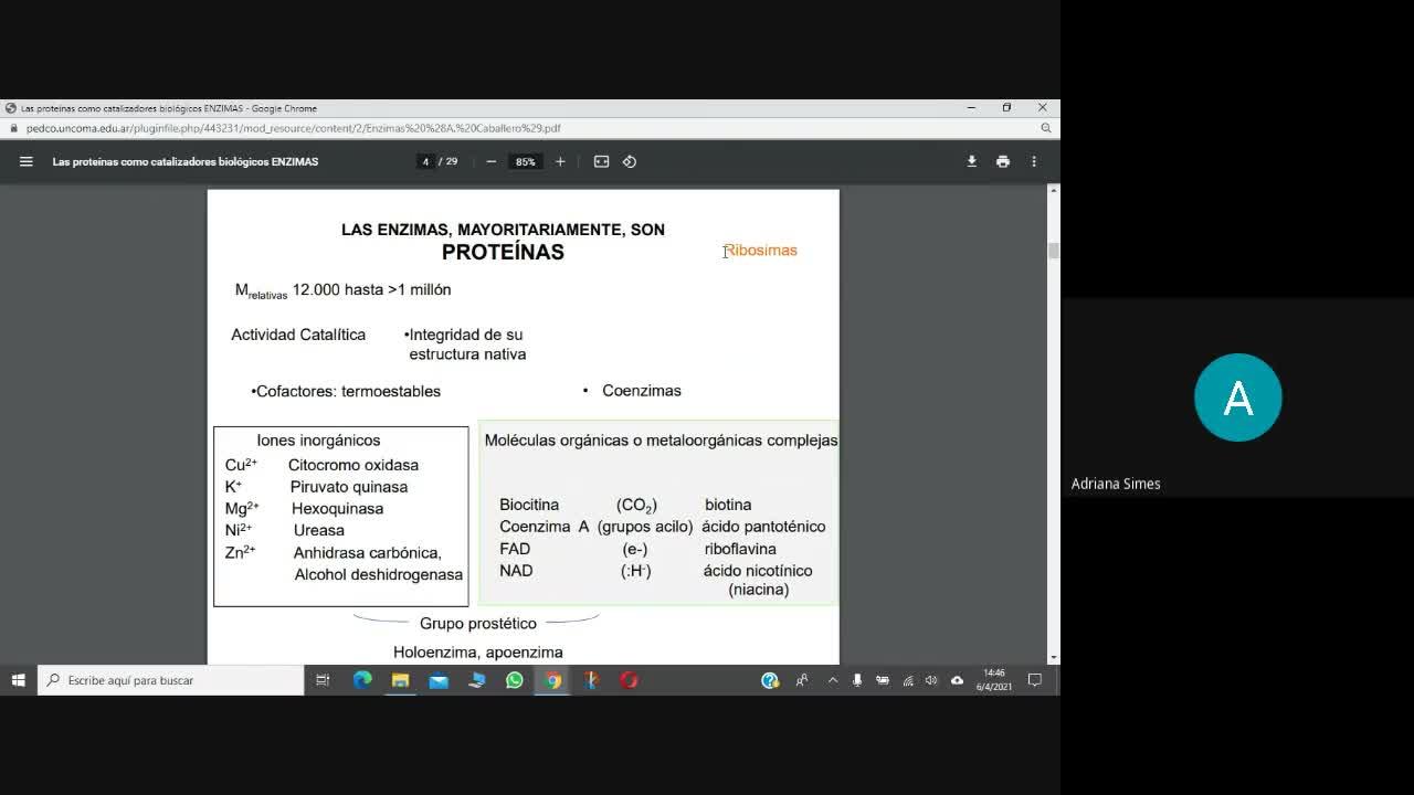 Bioq de los Alim- Enzimas Parte 1(6-4-2021)