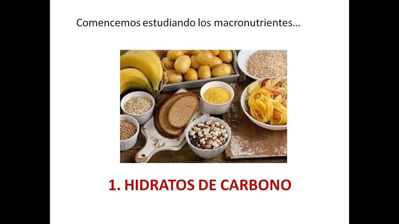 Nutrientes- parte 1