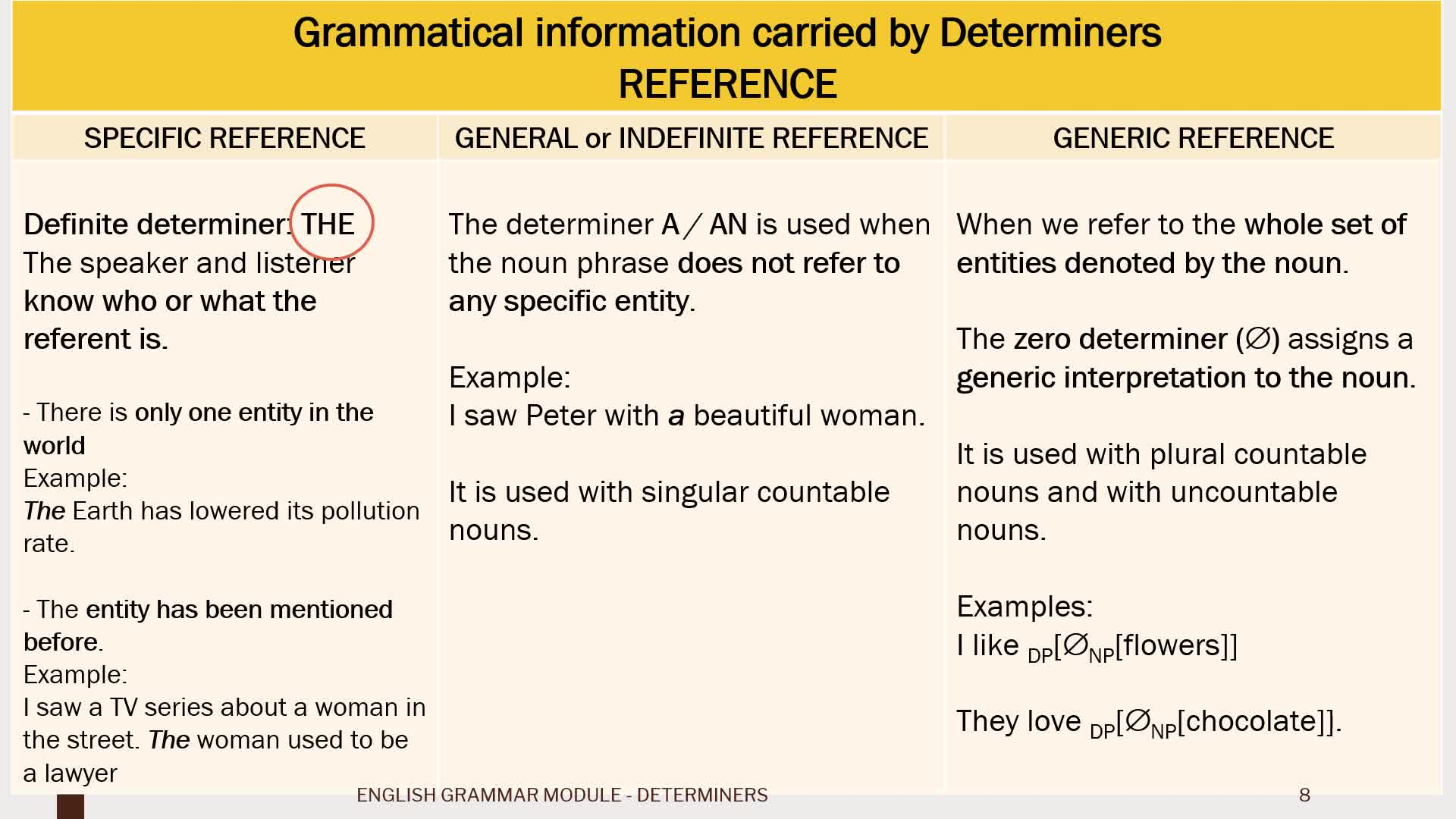 Theoretical explanation - DETERMINERS