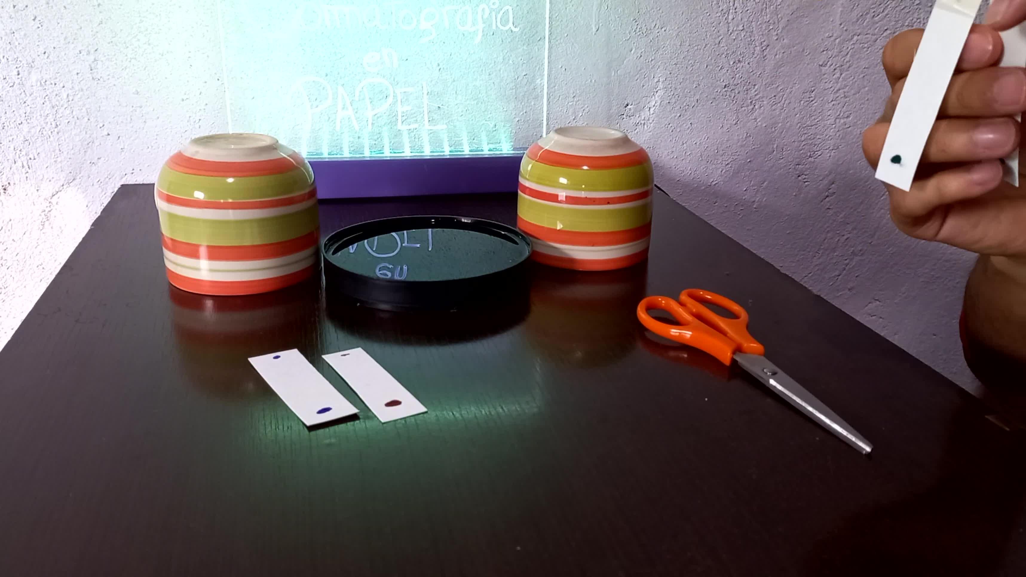 Trabajo Práctico - Cromatografía en papel