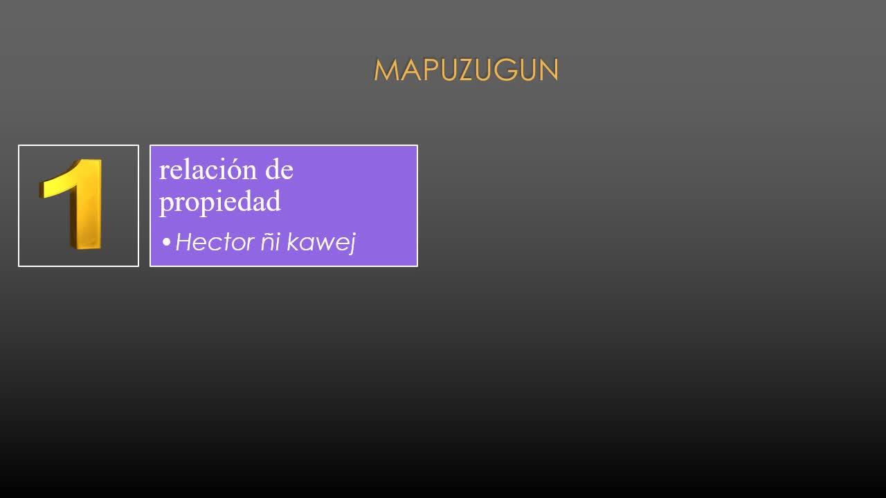 Wiñoy Xipantu 2021- segunda publicación