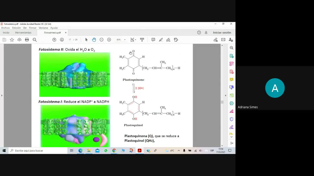 Bioq Alim 17-6-2021 Fotosíntesis Parte2