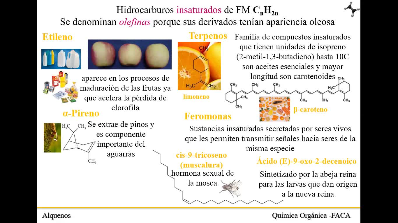 Clase 11_Alquenos_15-09-21