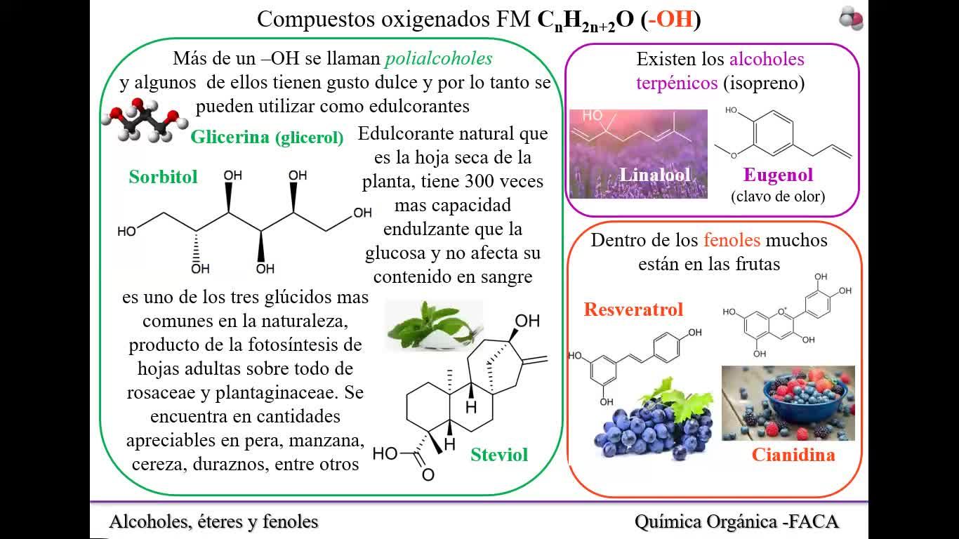 Clase N°19_13-10-2021